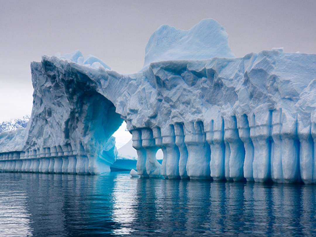 "Cruise ""From Antarctica to Africa"" – Ponant"